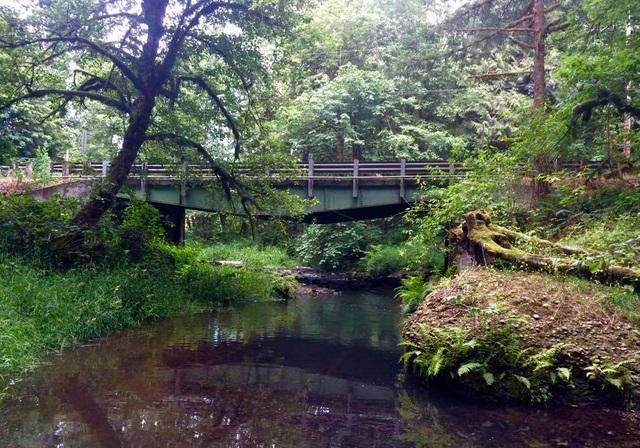 Tickle_Creek%2C_Boring%2C_Oregon.jpg