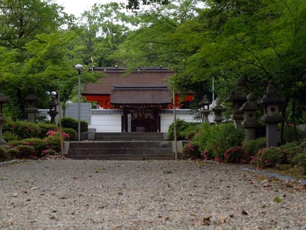 Tsuboi-Hachimangu